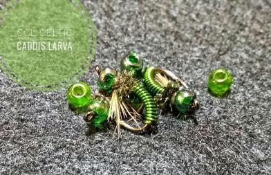 Green BH Copper Larva